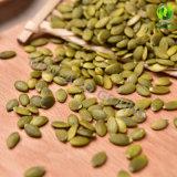 Nuevos núcleos y Gws de los gérmenes de calabaza de la piel del brillo de la cosecha con la calidad AA y orgánico