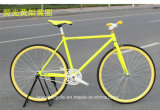 ثبت [هيغقوليتي] 26 '' ترك درّاجة/ثبت درّاجة/درّاجة/درّاجة