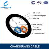 Câble fibre optique brutal de conduit d'utilisation d'environnement fabriqué en Chine GYFTY