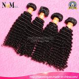 Het Boheemse Haar bundelt het Kroezige Krullende Boheemse Weefsel Har van /Virgin