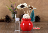 Ceramic colorido Fragrance Aroma Reed Diffuser Decoration Gift Set com 100ml Perfume Oil para TERMAS, Hotel, Office, pensão, Home Deco