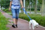 El artículo corriente al aire libre del entrenamiento del animal doméstico da la correa libre del correo para Biking que activa de funcionamiento del perro