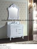 PVC 목욕탕 내각 목욕탕 (6813)