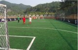 Futsalのための2016高品質Artificial Grass
