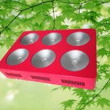 LED Grow Light Fabrication 300W 450W 600W 1200W COB LED Grow Light for Greenhouse and Tent