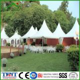 Partito Supply Pagoda Canopy Shelter Tent 6mx6m per Sale