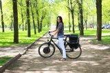 붙박이 관제사를 가진 전기 자전거 허브 모터 변환 장비 1000W