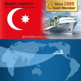Frete de mar rápido barato de China a Turquia/Istambul/Ismir/Mersin