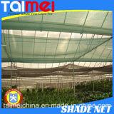 Heißer Verkauf! ! ! Gutes Guality Farbton-Tuch, schwarze Farben-landwirtschaftliches verwendetes Sonnenschutz-Netz, PET Filetarbeit