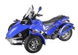 250cc All Gelände-Gebrauchsfahrzeug, Automatic Tricycle Buggy ATV