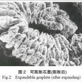 Graphite extensible avec la température élevée Resistance