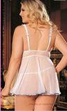 Женское бельё больших повелительниц размера сексуальное в цене по прейскуранту завода-изготовителя