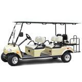 Шина челнока тележки гольфа 6+2 Seater миниая в пятне авиапорта гостиницы сценарном