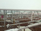 El enmarcar de acero galvanizado de construcción del material del calibrador de acero de la luz