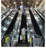 Escada rolante comercial moderna residencial ao ar livre interna do corrimão da etapa