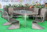 De openlucht Rieten Eettafel van de Tuin van het Huis van het Meubilair (2072)