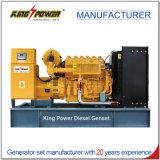 1200kw biogas Generaor con il certificato 50Hz del Ce