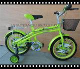 """녹색 대중적인 새로운 12명의 """" /16의 """" /20의 """" 아이 자전거 아이들 자전거"""