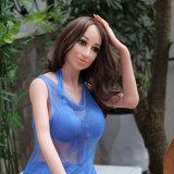 El sexo chino del varón adulto de la muchacha del producto caliente juega la muñeca