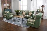 Sofá da sala de visitas com o sofá da tela do projeto moderno para a mobília Home