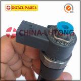 Pièce de pompe à injection injectable Mercedes Bosch Fuel Injector-Diesel