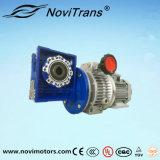мотор предохранения от перегрузок по току AC 0.75kw с воеводом скорости и Decelerator (YFM-80E/GD)