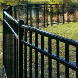 Clôture enduite de jardin de noir de qualité de poudre de PPG