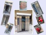 Horno de gas rotatorio del estante de la alta calidad profesional del diseño de China