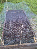Galvanisiert, nachdem sechseckige Draht-Filetarbeiten mit kohlenstoffarmem Stahl gesponnen worden sind