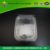 Eco-Friendly 플레스틱 포장 콘테이너