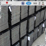 Tira de acero laminada en caliente del mejor precio del carbón de S235jr Ss400 en bobina