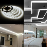 Illuminazione decorativa 2835 strisce 600LEDs del LED per i centri commerciali domestici