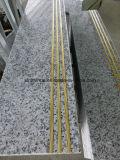Lastra bianca del granito della Cina Biaco Sardo