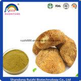 GMP Uittreksel Van uitstekende kwaliteit 30% van Hericium Erinaceus van het Uittreksel van de Paddestoel van de Aap van de Producten van de Fabriek Beste HoofdPolysaccharide