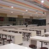 (SP-CS369) de Commerciële Lijst en de Stoel van de Cafetaria van de Kantine van de Fabriek School Vaste