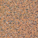 Azulejo material casero de la porcelana de Foshan (VRR6I675, 600X600m m)