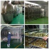De aquatische Producten Gevriesdroogde Drogende Machine van de Vorst
