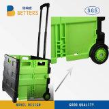 Double chariot de chariot à achats de couleur de qualité de Poprtable