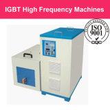 Het Verwarmen van de Hoge Frequentie IGBT de Reeks van de Apparatuur van de Inductie van de Machine voor de Smeltende Apparaten van het Lassen van de Behandeling van de Uitsmelting Thermische