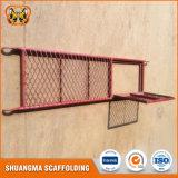 Planche d'acier d'échafaudage de construction et de décoration