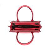 女性(MBNO041074)のための簡潔なデザイナー学生かばんのハンドバッグ