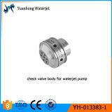 La bomba del mecanismo impulsor directo de la cortadora del jet de agua parte el ensamblaje de la válvula de verificación