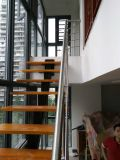 Надувательство фабрики сразу лестницы твердой древесины нержавеющей стали