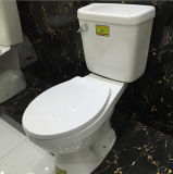 Gute Preis-Typen der zweiteiligen keramischen Toiletten-Filterglocke