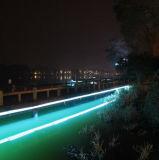 ホテルまたはレストランの装飾50m/Rollのための100-240V屈曲ネオンRope/LED軽い22-24lm