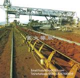 Bande de conveyeur résistante acide de /Alkali pour Feltilizer