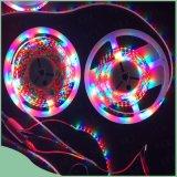 고품질 LED는 플랜트를 위해 가볍게 증가한다
