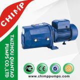Aufzug-Wasser-Pumpen des Roheisen-kleinen Strahlen-1.0HP elektrische für die Landwirtschaft