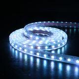 IP67 LED 지구 점화 LED 램프 3528 SMD LED 빛 지구