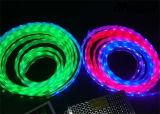 Doppio indicatore luminoso di striscia di riga 3528 SMD 240LEDs/Meter LED